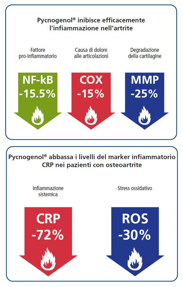 Pycnogenol® inibisce efcacemente l'infammazione nell'artrite