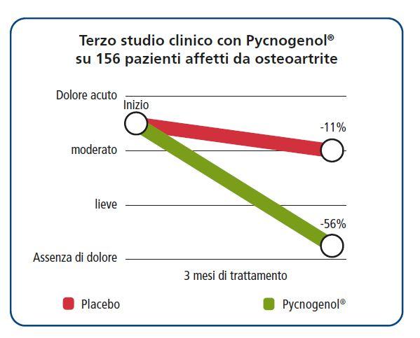 Terzo studio clinico con Pycnogenol® su 156 pazienti affetti da osteoartrite