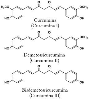 Curcuminoidi